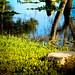 ...Uno, il cui nome fu scritto sull'acqua. (J. Keats)