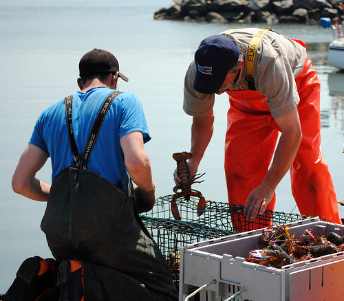 lobster fishing | by Sharon_Edwards