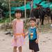 Visiting the elephants at Namuang safari park