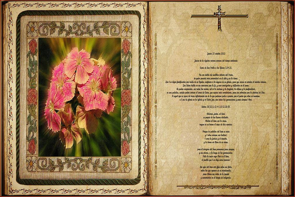Resultado de imagen para Efesios (3,14-21)