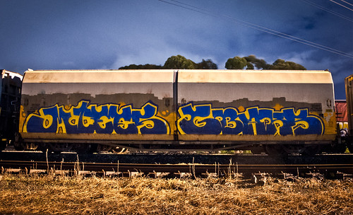 Dries serge geckos berstt | by Menaces Crew