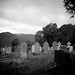 at glendalough cemetery