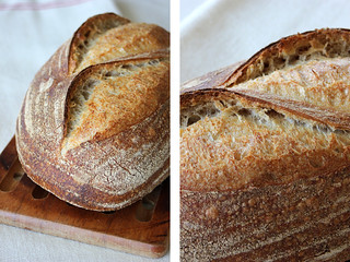Rubaud Levain Crusts | by PiPs75