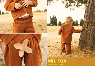 film petit: fantastic mr. fox | by skirt_as_top