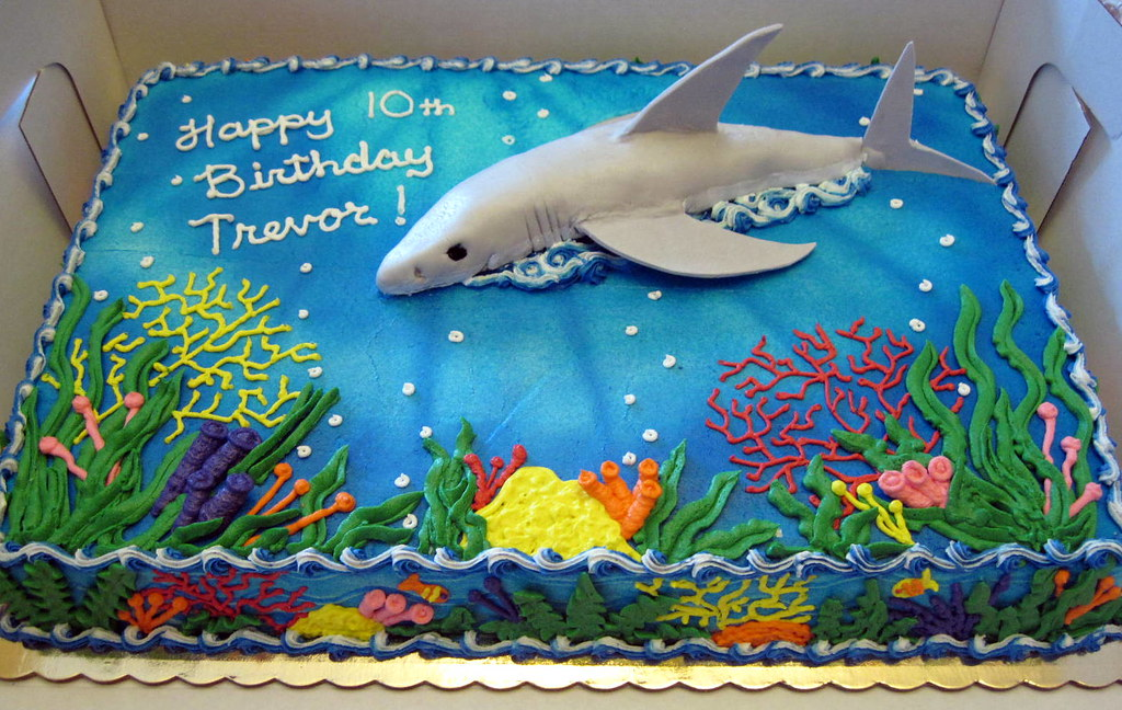 How To Make A Dolphin Shaped Cake
