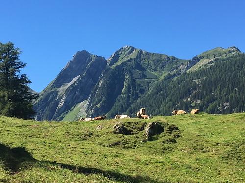 フォルクラッツ峠(Col de la Forclaz)