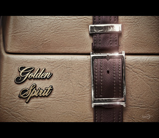 Zimmer Golden Spirit | by *Photofreaks*
