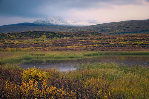 Rainy Sunset on the Tundra | by Joe Ganster