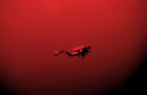 "Diving in ""The Red"" 