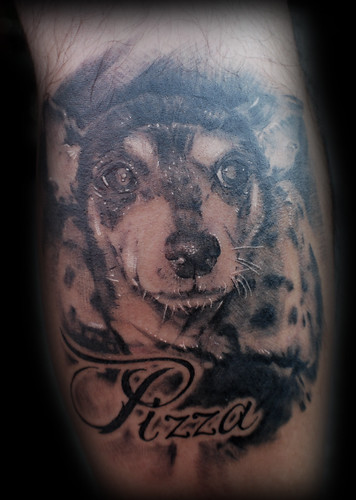 pizza the dog