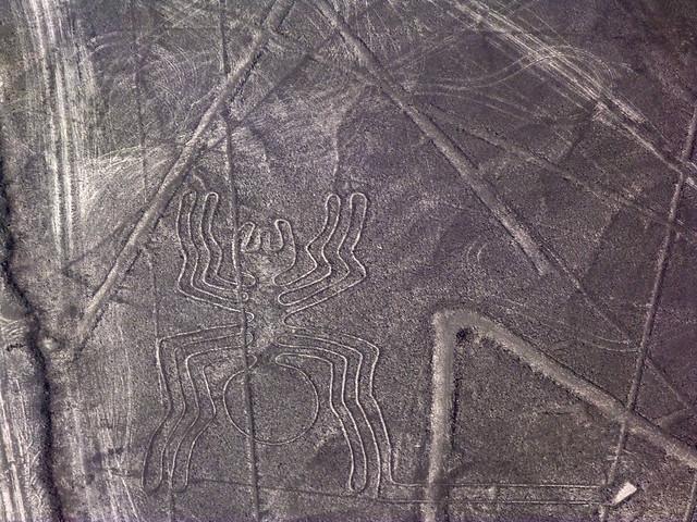 Líneas de Nazca: la araña