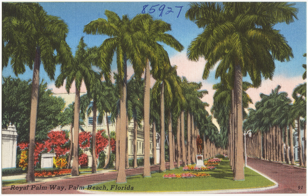 Royal Palm Beach Tax Collector S Office