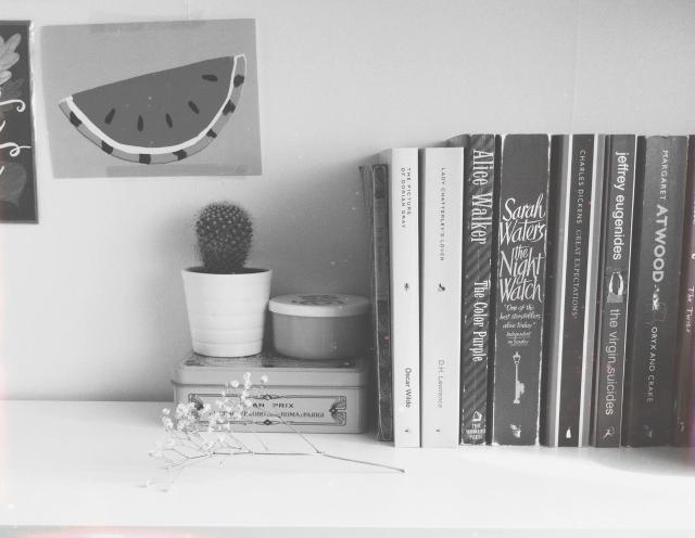 bookshelf tour vivatramp
