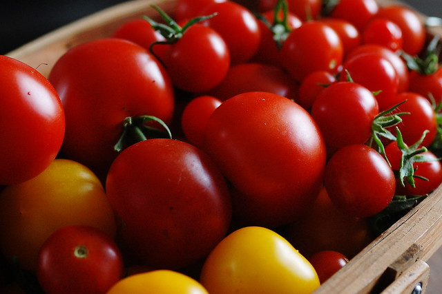 Trug full of red and yellow tomatoes