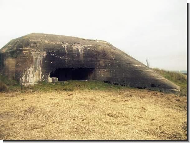 Underground Survival Shelter Underground Survival
