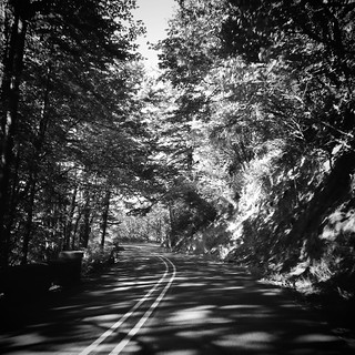 Driving in the shades | by Dom Guillochon