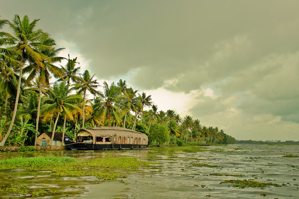 kerala, backwaters, monsoon, greenery