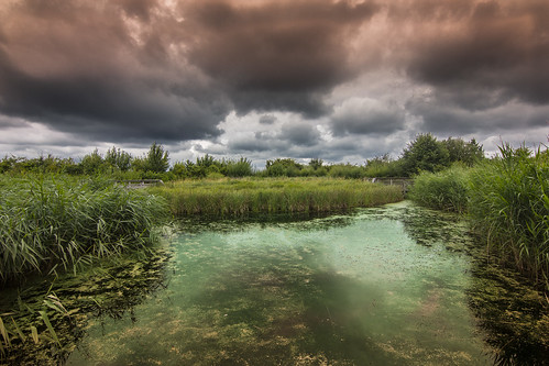 Barnes wetland centre | by Digital Kungfucat