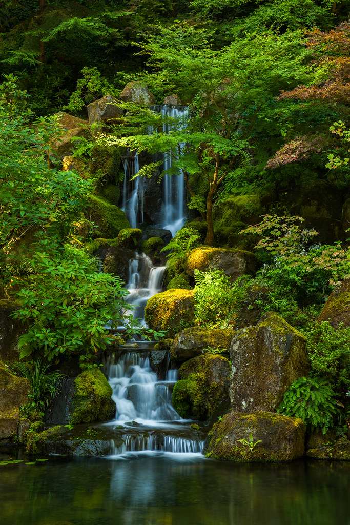 Green Oasis I Spent Some Time In The Portland Japanese Gar Flickr