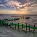 Oyster field under sunset七股蚵田夕照