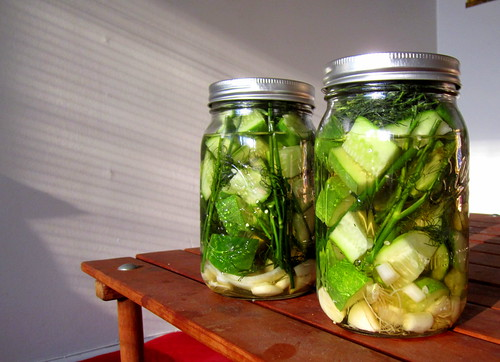 homemade pickles | by telepathicparanoia