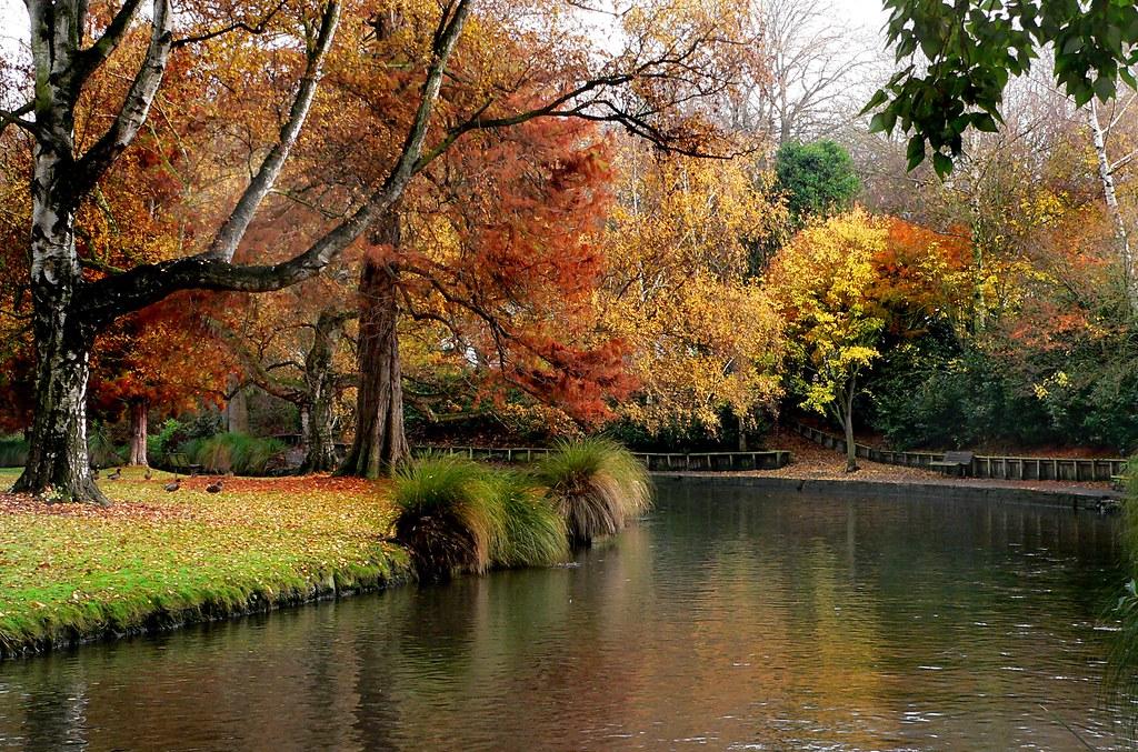 Hagley Park New Zealand The Christchurch Botanic