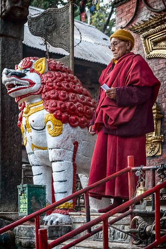 The Lion and the Monk | by Shantideva