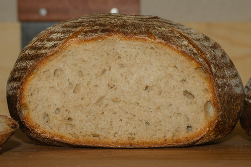 Vermont Sourdough with Increased Wholegrain—Underproofed Boule, Over-tight Crumb | by Tuirgin