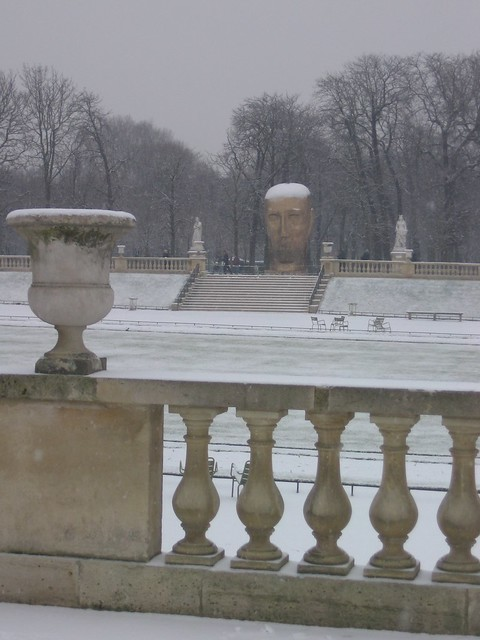 Photo for Arbres jardin du luxembourg