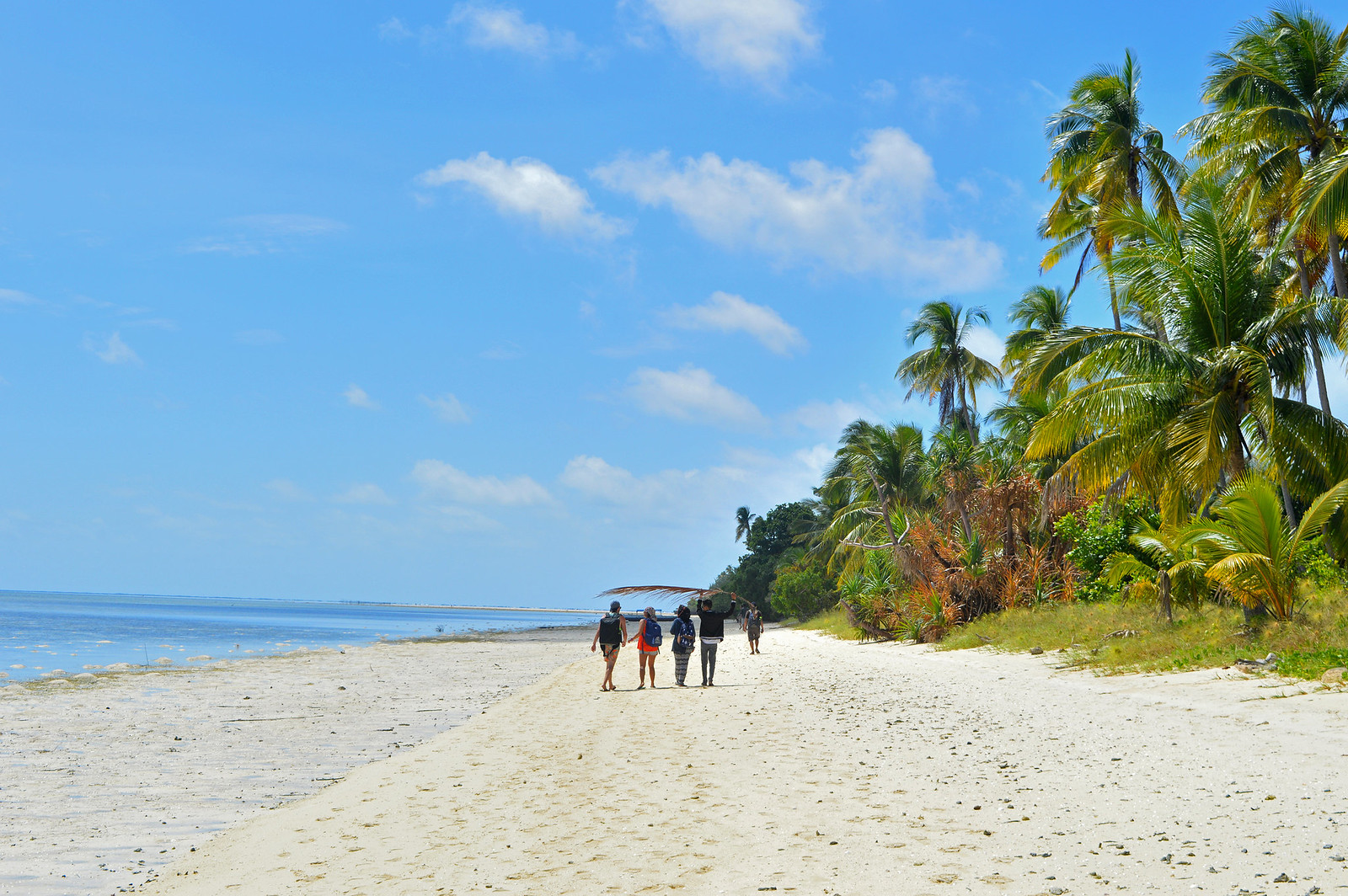 Hoga island