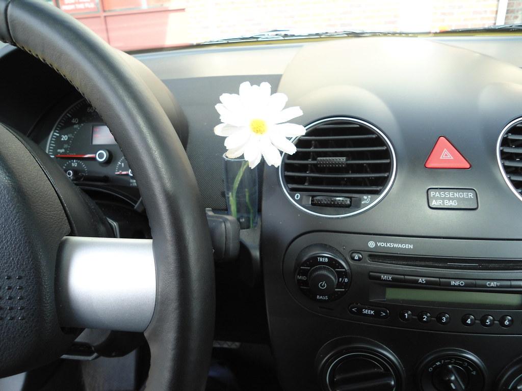 volkswagen beetle fresh   daisy dashboard vase patricksmercy flickr