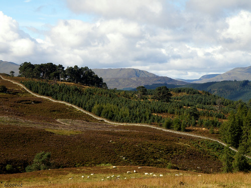 Highland Perthshire | by Scoonie
