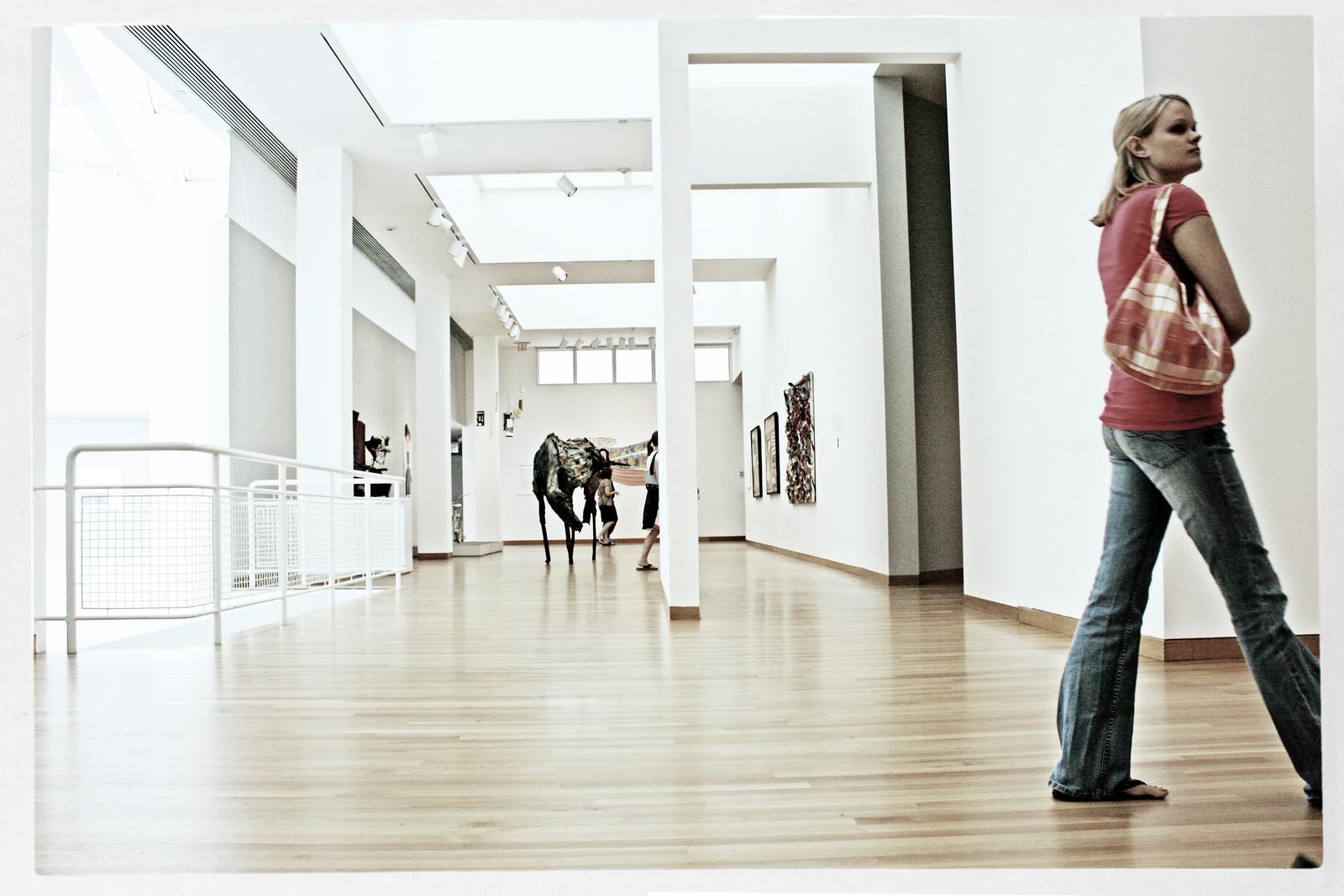 Art Appreciators at the HighMuseum