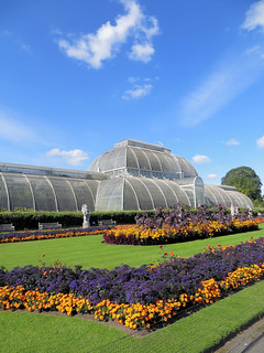 The Palm House | by Feathering the Nest