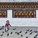 A girl chasing pigeons in Thimphu, Bhutan