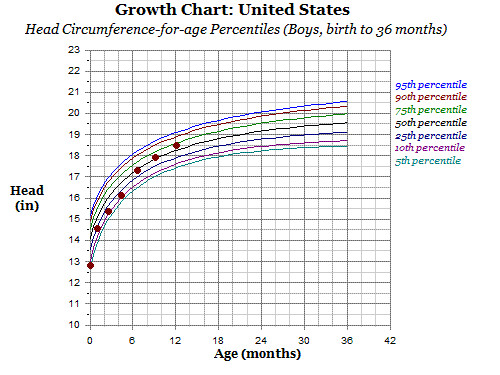 Growth Chart 12 Months Head Circumference Lovemeghan Flickr