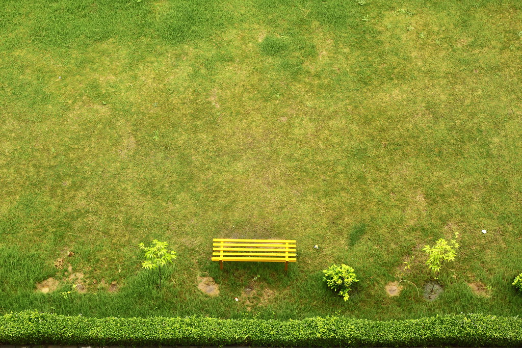 How to Create a Garden in the City