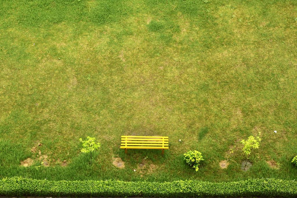 Green Garden Neetesh Gupta Flickr