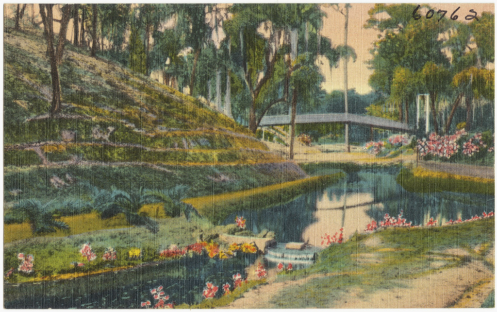 Ravine Gardens Palatka Florida File Name 06 10 008499 T Flickr