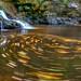 Wilton Falls