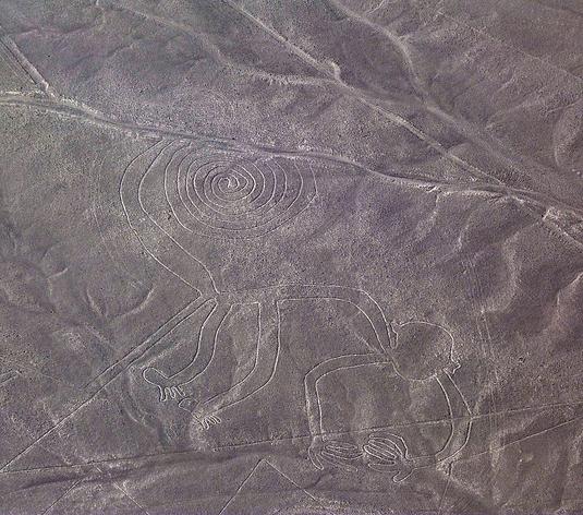 Mono (Líneas de Nazca en un vuelo en avioneta)