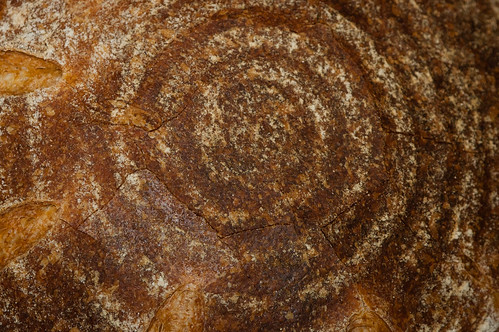 Vermont Sourdough with Increased Wholegrain—Crackled Crust | by Tuirgin