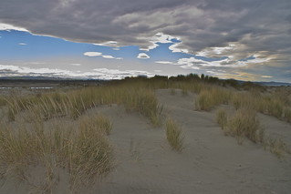 Sand dunes - Ashley River Canterbury New Zealand | by Steve Attwood