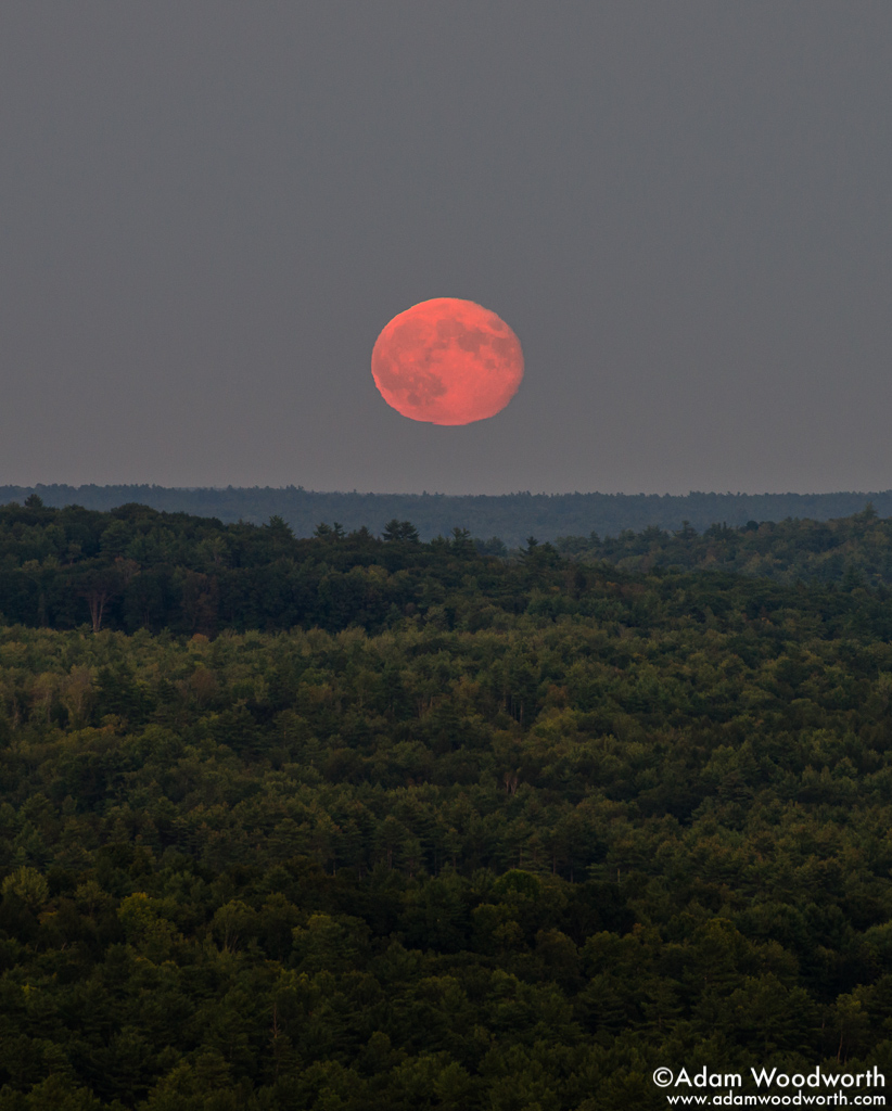 Mooning Over New Missoni: Full Moon Rises Over Maine Forest