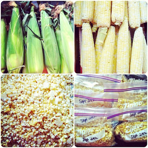 Today's project. Local sweet corn all winter long! | by Completely Delicious