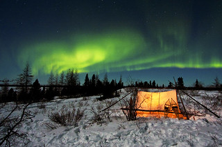 Northern Lights | by chaines9