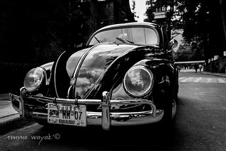 Old Beetle | by emme wayak'
