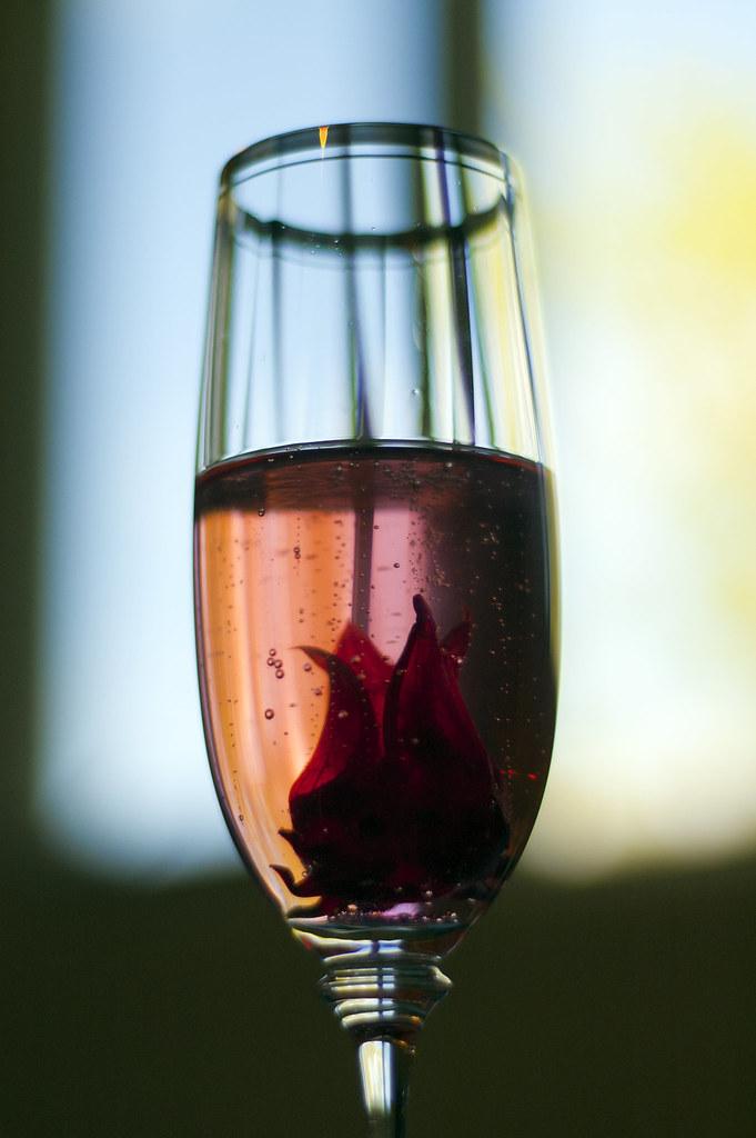 Hibiscus Flower In Champagne Elizabeth Silva Flickr