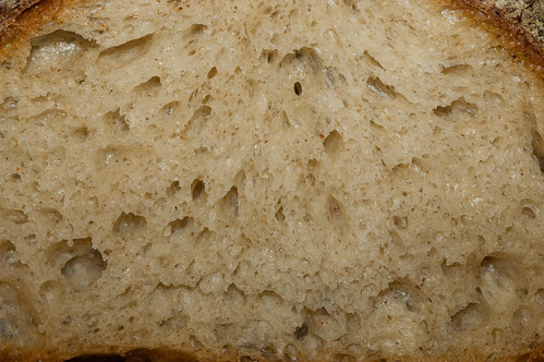 Vermont Sourdough with Increased Wholegrain—Well-proofed Boule, Crumb: Close-up | by Tuirgin