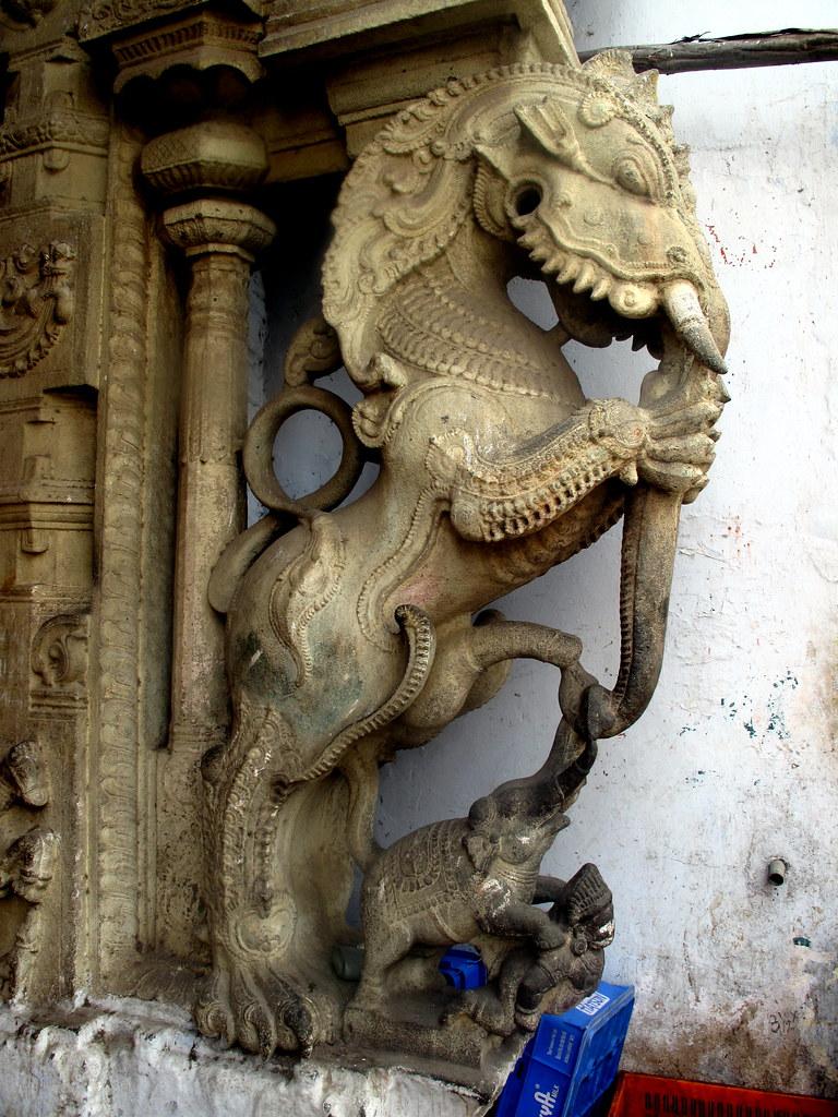 Kanyakumari Yali  Chris 9  Flickr-2738